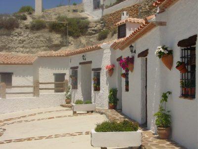 8 bedroom Commercial property for sale in Castillejar
