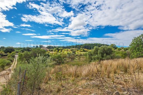 0 bedroom Land for sale in Moscari