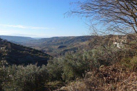 Property For Sale In Castril De La Pena 14 Properties