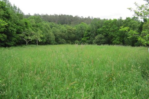 Cheap plots of land for sale in Galicia - 20 properties