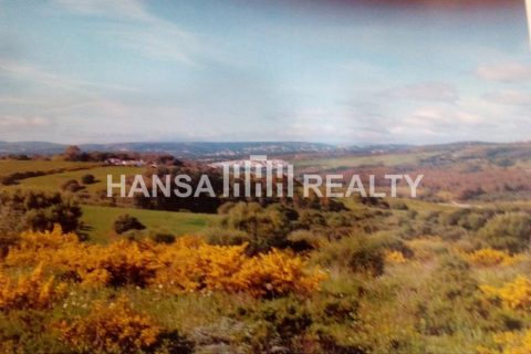 0 bedroom Land for sale in San Enrique De Guadiaro